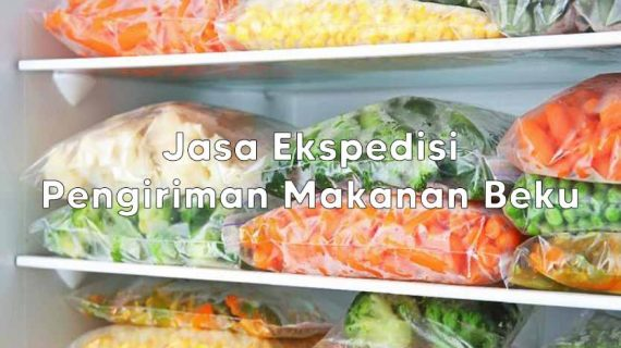 Jasa Ekspedisi Pengiriman Frozen Food